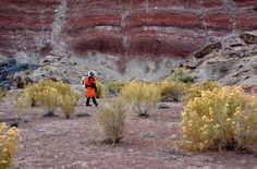 Remarkably diverse flora in Utah, USA, trains scientists for future missions on Mars http://www.sciencetotal.com/news/2016-06-remarkably-diverse-flora-in-utah-usa-trains-scientists-for-future-missions-on-mars/
