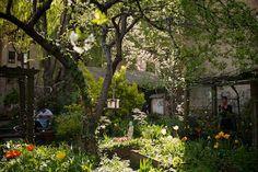 New York's Community Gardens