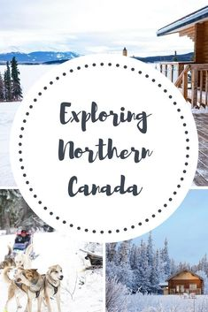 Your guide to all things Yukon, from where to stay, what to do and where to try and spot the elusive Northern Lights. Northern Canada has it all! Wow Travel, Travel With Kids, Family Travel, Beach Trip, Vacation Trips, Northern Canada, Canada Holiday, Adventures Abroad, Canadian Travel