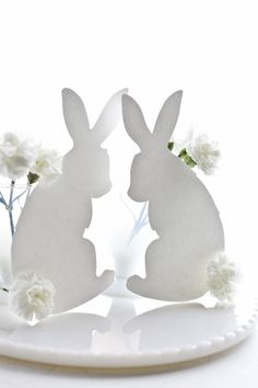 WHITE RABBIT SILOUETTES WITH CARNATION COTTON TAILS