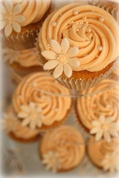 Vanilla Cupcakes with Orange Marmalade Buttercream Icing.