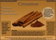 Cinnamon Benefits Infographic - Preparing For SHTF