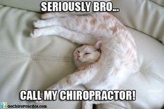 Bradley Chiropractic Inc. (323) 874-2225