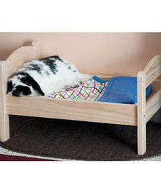 A rabbit in a doll bed from Cats Sleeping in Doll Beds - Cats Tips & Advice | mom.me
