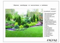 схема клумбы с хвойными барбарисом спиреей: 14 тыс изображений найдено в Яндекс.Картинках