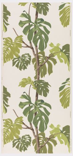 Sidewall | Canada, 1948-1958 | Machine-printed on textured paper | Dark green and lime green tropical leaves of a philodendron monstera printed on a white ground | Cooper-Hewitt
