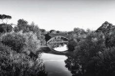 Obiettivo Pesaro: ponte vecchio http://vivere.biz/0iG