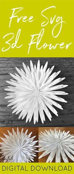 FREE DOWNLOAD - SVG cut flower - free svg cut files #freedownload #svgcutfiles #freeclipart