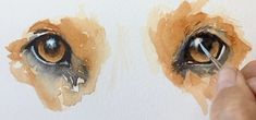 Painting Dog's eyes in watercolor SWS-Sherry-Daerr | Love the final step of adding gouche & mag blue over the highlight for reflection. Really nice tip.