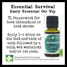 Very Helpful Essential Oil Menstrual Tips For essential oils menstrual cramps home remedies Yl Oils, Natural Essential Oils, Essential Oil Blends, Doterra Oils, Cramp Remedies, Remedies For Menstrual Cramps, Homeopathic Remedies, Young Living Oils, Young Living Essential Oils