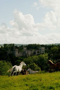 Lismore Castle, County Waterford, Ireland. Photo: Bill Phelps