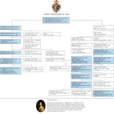 The Medici Genealogical Tree - Florence