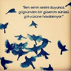 #günaydın  #kuş #güvercin  #aşk #sanat  #edebiyat  #şiir #şiirsokakta  #tag #instagram#book#bookstagram#kitap#roman#yazar#k http://turkrazzi.com/ipost/1519406846895510168/?code=BUWBHoigNKY