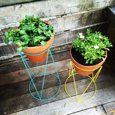 Pot plant stands from #Kmart...LOVE