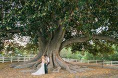 Camarillo Ranch House Wedding Photography – Jeannette + Mike » California & Destination Elopement Photographer