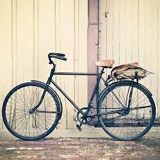 Bikes Walmart Bikes Target Kid Bikes Bikes Amazon Mountain Bikes Trek Bikes Bikes Bmx Bikes For Kids Vintage Bike Vintage Bicycles Vintage Bikes Bicycle