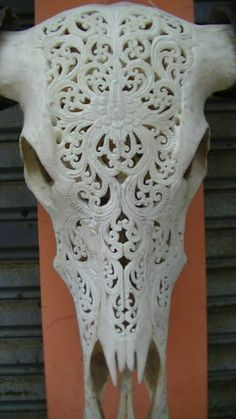 Flower Carved in Natural Huge Buffalo Cow Head Skull Bone Carving w Black Horn | eBay