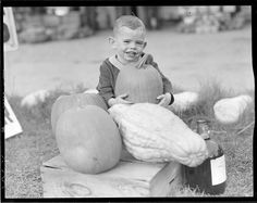 https://flic.kr/p/bvZ9aW | Kids visit farm during pumpkin time | File name: 08_06_021597 Title: Kids visit farm during pumpkin time Creator/Contributor: Jones, Leslie, 1886-1967 (photographer) Date created: 1934 - 1956 (approximate) Physical description: 1 negative : film, black & white ; 4 x 5 in.  Genre: Film negatives Subject: Pumpkins; Squashes; Children Notes: Title from information provided by Leslie Jones or the Boston Public Library on the negative or negative sleeve.; Date suppl...