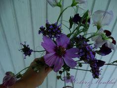 Újdonság: Hétvégi virágcsokor az asztalon, http://kertinfo.hu/hetvegi-viragcsokor-az-asztalon/, ezekben a témakörökben:  #dekor #ernyősverbéna #Kert #kertivirágcsokor #pillangóvirág #szagosdíszbükköny #szellőrózsa #virágcsokor #virágcsokorakertből, írta: Dekor és Mentha
