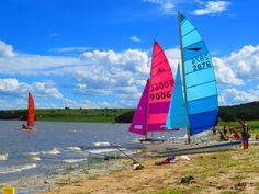 Colour, contrast, catamarans!