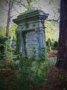 Overgrown cemetery in Glasgow, Scotland