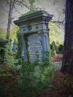 Overgrown cemetery in Glasgow, Scotland