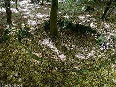 Reste eines alten Kalkofens bei Betzenstein | Kult-Urzeit