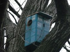 TARDIS squirrel house by animaltourism.com....oooohhhh I may have to paint Karls house like this