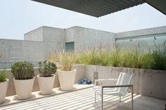 Penthouse Polanco by Gantous Arquitectos Sky Garden, Garden Pool, Patio Design, Garden Design, House Design, Roofing Options, Residential Roofing, Rooftop Terrace, Gardens