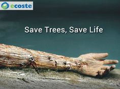 Save Trees..They will Save You