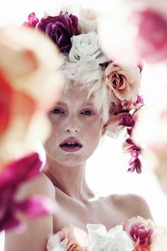 Gorgeous blooming roses in fashion and makeup hues
