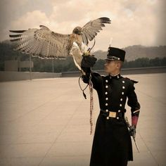 A golden eagle lands on the gauntlet of a cadet of the Heroic Military College of Mexico (Heroico Colegio Militar).