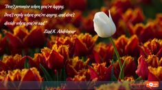 """Inspirational Wallpaper Quote by Ziad K. Abdelnour """"Don't promise when you're happy, Don't reply when you're angry, and don't decide when you're sad."""""""