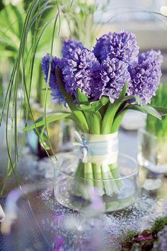 Hyacinten, bloeitijd: maart - mei   A Few Of My Favorite Things for the Easter Table in glorious springtime!