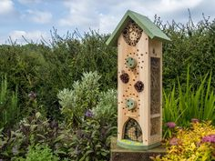Image result for insect house