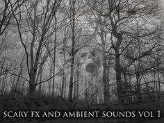 Layer in the sounds of Scary, Creepy, Mystery FX & Ambient Sounds from Adam Bielecki for your next project. Browse all audio options on the Unity Asset Store. Scary Sound Effects, Scary Sounds, Pensacola Beach, Graphic Design Trends, Halloween Design, Free Photos, Unity, Creepy, Mystery