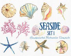 Watercolor Sea Shells Clipart Instant Digital by SmallHouseBigPony Watercolor Sea, Watercolor Animals, Poster Mural, Art Aquarelle, Wedding Clip, Flower Clipart, Sea Shells, Seaside, How To Draw Hands