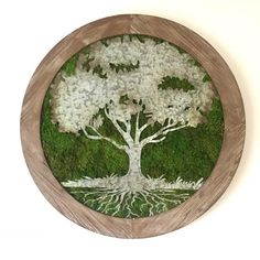 Adding moss to your home or work space is a great way to add lush greenery without having to worry about care or maintenance. Moss Wall Art, Moss Art, Dried Flower Arrangements, Dried Flowers, Moss Decor, Lush, Wood Toys, Plant Decor, Indoor Garden