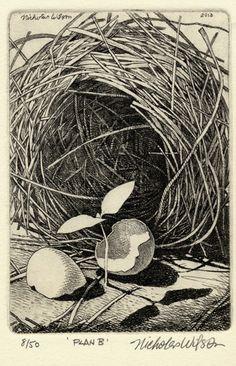 Nicholas Wilson Etching of nest eggshell & plant