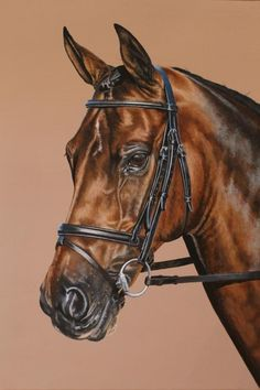 Horse painting CLICK Visit link above for more options Horse Drawings, Realistic Drawings, Arte Equina, Horse Artwork, Horse Paintings, Watercolor Horse, Horse Portrait, Horse Print, Equine Art
