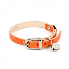 Collier luxe pour Chat - Orange