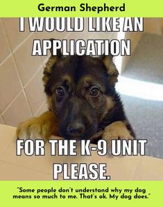 Look at the webpage to learn more on German Shepherds Please click here for more information...