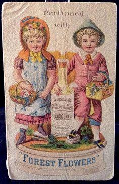 Austen's Forest Flower Cologne Victorian #TradeCard 1880s Oswego NY Scent Paper #AustensForestFlowerCologne