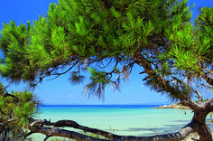 Many people believe that the peninsula of Sithonia is one of the most beautiful places in Greece. Vacation Places, Places To Travel, Places To Go, Vacation Deals, Most Beautiful Beaches, Beautiful Places, Famous Lighthouses, Halkidiki Greece, Macedonia Greece
