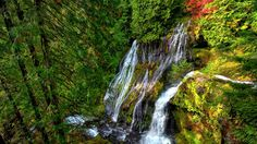 XiNature.com - Landscape Waterfalls Forest Nature Waterfall New Wallpaper