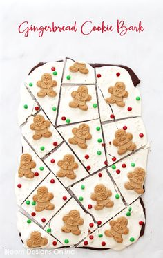 Gingerbread Cookie B