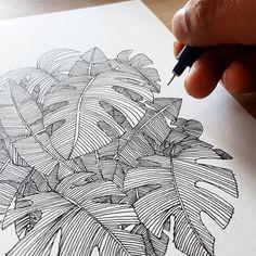 Doodle Patterns 557109416404369187 - leaf drawing Source by EnCoursdeCreation Art And Illustration, Ink Illustrations, Leaf Drawing, Painting & Drawing, Drawing Drawing, Drawing With Pen, Drawing Ideas, Doodle Sketch, Doodle Art