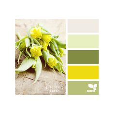 Design Seeds for all who color flora fresh ❤ liked on Polyvore featuring colors, colours, backgrounds, design seeds and color palettes