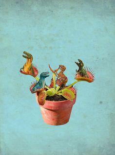 julia geiser. awesom dino plant