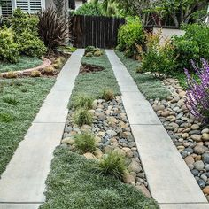 Landscaped ribbon driveway by Natural Bridges Landscaping. Nicely melds with adjoining design on both sides.